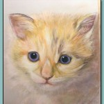 Portrait of a Cat by Thomas Adamski