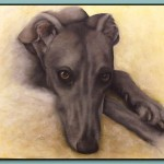 Greyhound Resting by Thomas Adamski